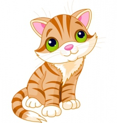 Very cute kitten vector