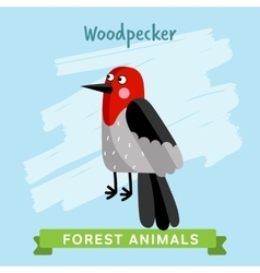 Woodpecker  forest animals vector