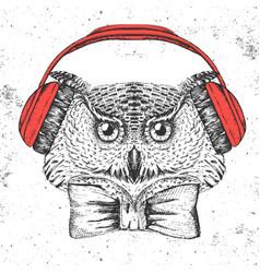 hipster bird owl hand drawing muzzle of bird owl vector image