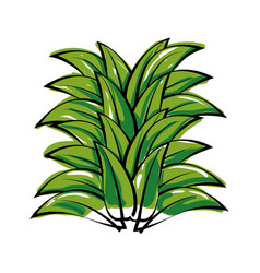 leaves icon image vector image vector image