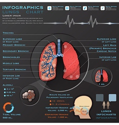Lungs and respiratory system medical infographic vector