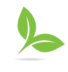 Eco icon green leaf isolated vector
