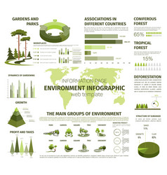 infographic for forest and green nature vector image vector image
