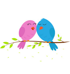 Love bird on a branch vector