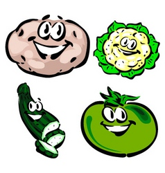 potato cauliflower zucchini green tomato vector image