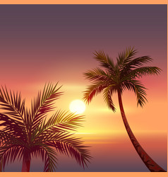 sunset on tropical island black silhouette of vector image vector image