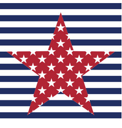 usa star pattern background american vector image