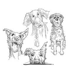 Sketch of dogs vector