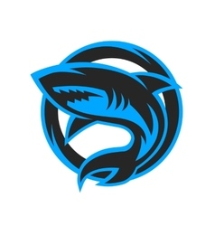 Shark sport logo emblem vector