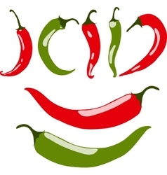 Chili peppers red and green vector