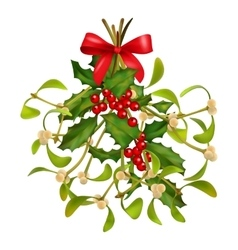 Christmas mistletoe and holly bouquet vector