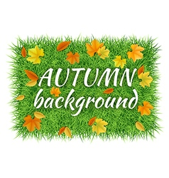 Grass carpet fallen leaves background vector image