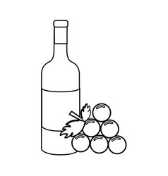 Line bottle of wine with bunch of grapes icon vector