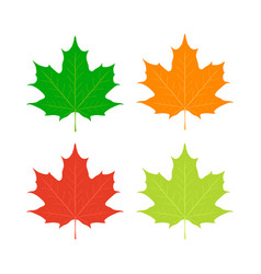 maple leaves canada symbol flat style vector image