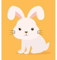 rabbit cartoon pet design vector image