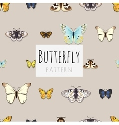 Set of butterflies with space for text vector