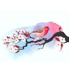 Pink bird on cherry branch vector