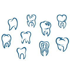 Human teeth set vector image vector image