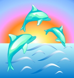 The dolphins vector