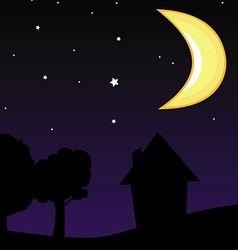moon night sky vector image