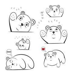 bruin bear vector image
