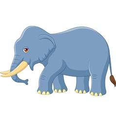 Cartoon elephant mascot isolated vector