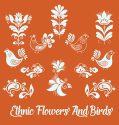 Set of floral elements and birds vector