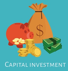 Capital investment vector image vector image