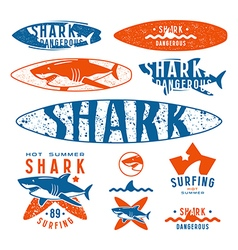 Graphic design with the image of shark vector image