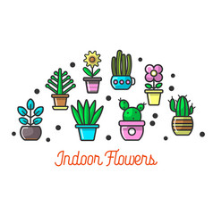 Indoor flowers in colorful pots set on poster vector