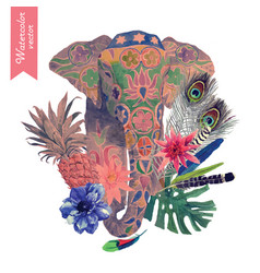Watercolor of indian elephant head vector