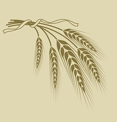 Spikelets of wheat tied with a ribbon on a beige vector