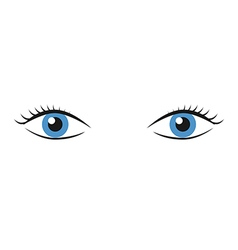 Pair of blue eyes vector