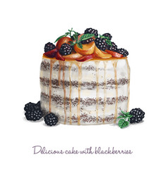 delicious cake with blackberries vector image