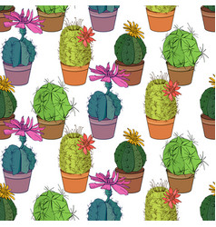 Seamless pattern with traditional homeplant cactus vector