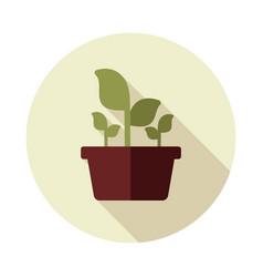 plant in pot flat icon garden flowerpot vector image