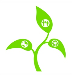 eco sprout vector image vector image