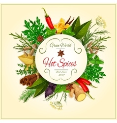 Hot spices and herbs poster vector image