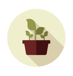 Plant in pot flat icon garden flowerpot vector