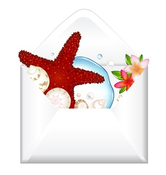 Open envelope with starfish and flowers vector