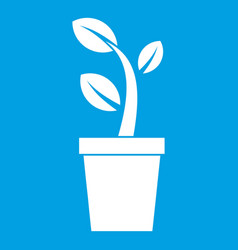 Sprout in pot icon white vector