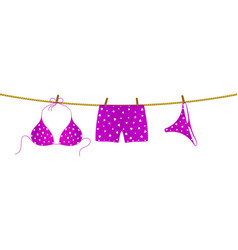 bikini and boxer shorts hanging on rope vector image vector image
