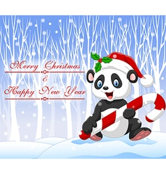 Cartoon funny panda bear holding Christmas candy vector image