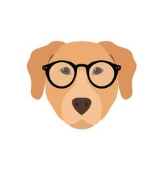 labrador in glasses cute dog vector image vector image