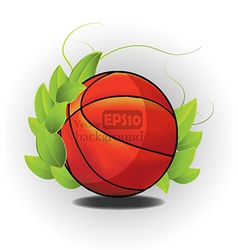 Sports ball design vector image