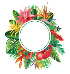 Round frame from tropical plants and flowers vector