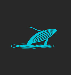 A humpback whale jump out of the water a vector