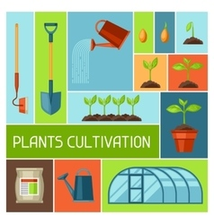 Background with agriculture objects instruments vector