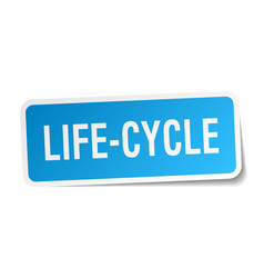 Life-cycle square sticker on white vector