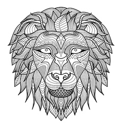Lion head front vector image